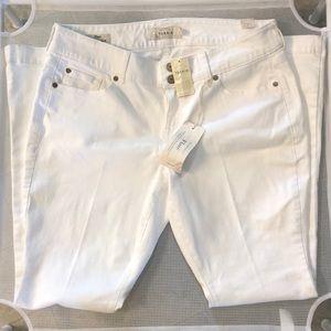 Torrid Flare White Regular Jeans 16